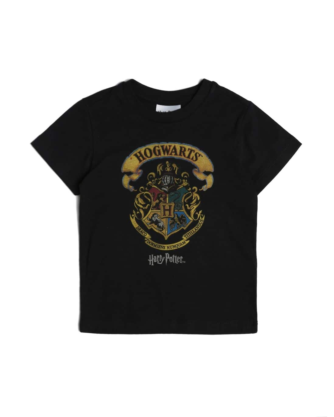 Camiseta Harry Potter - Preto